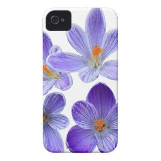 Purple crocuses 02 iPhone 4 case