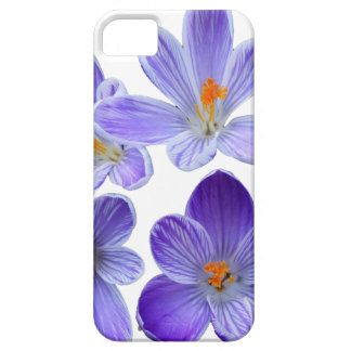 Purple crocuses 02 iPhone 5 cover