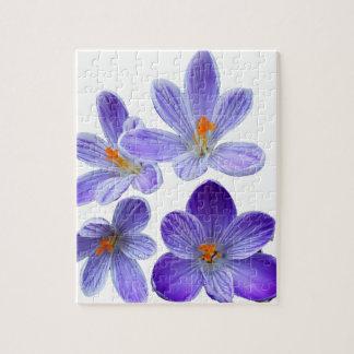 Purple crocuses 02 jigsaw puzzle