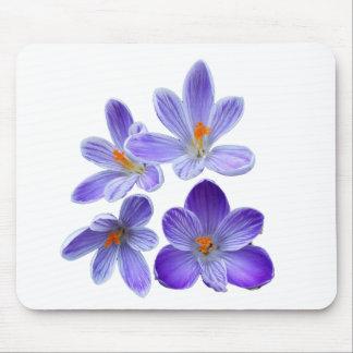 Purple crocuses 02 mouse pad