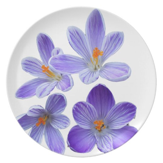 Purple crocuses 02 party plates