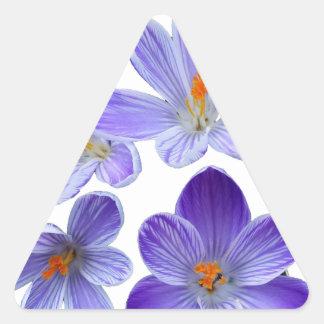 Purple crocuses 02 triangle sticker