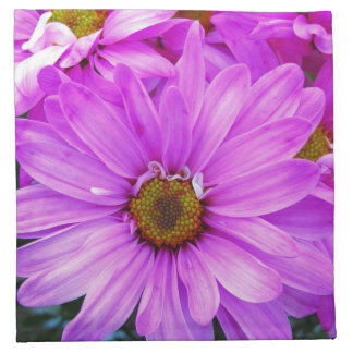 Purple Daisies - Cloth Napkins