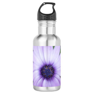Purple Daisy 532 Ml Water Bottle