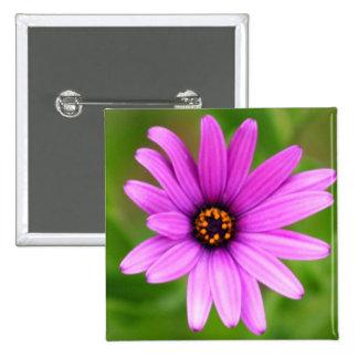 Purple Daisy button