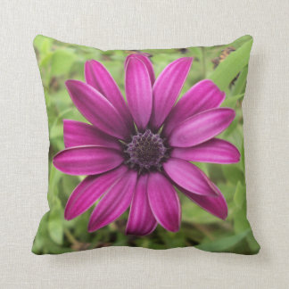 Purple Daisy Cushion