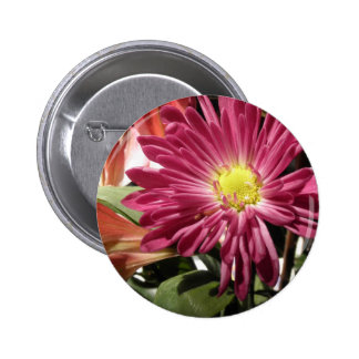 Purple Daisy Flower Daisies Flowers Photo 6 Cm Round Badge