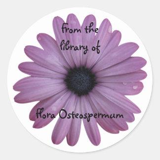 Purple Daisy Flower Osteospermum Custom Bookplate Classic Round Sticker