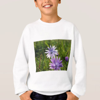 Purple daisy flowers on green background sweatshirt