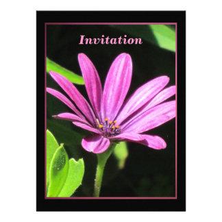 Purple Daisy Custom Invite