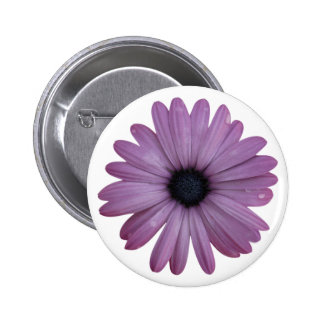 Purple Daisy Like Flower Osteospermum ecklonis 6 Cm Round Badge