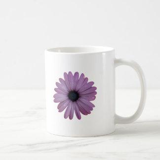 Purple Daisy Like Flower Osteospermum ecklonis Basic White Mug