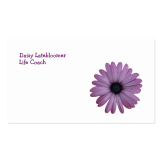 Purple Daisy Like Flower Osteospermum ecklonis Pack Of Standard Business Cards