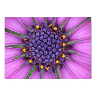 Purple Daisy Picture 13 Cm X 18 Cm Invitation Card