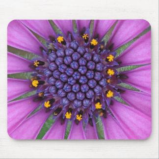 Purple Daisy Picture Mousepads