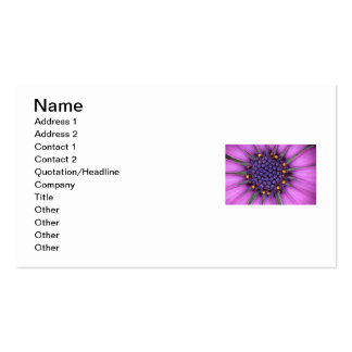 Purple Daisy Picture Pack Of Standard Business Cards