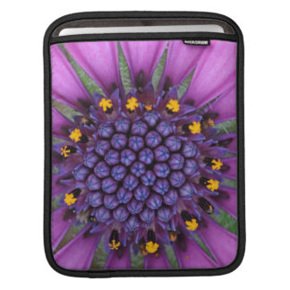 Purple Daisy Picture Sleeves For iPads