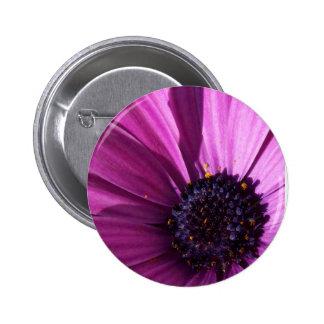 Purple Daisy Pinback Button