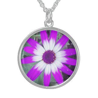 Purple Daisy Round Silver Necklace