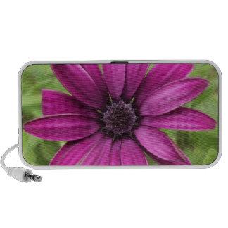 Purple Daisy Laptop Speaker
