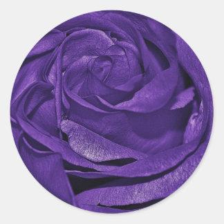 Purple dark rose round stickers