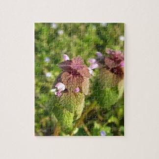 Purple Dead-nettle ( Lamium purpureum ) on green Jigsaw Puzzle
