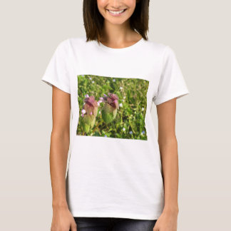 Purple Dead-nettle ( Lamium purpureum ) on green T-Shirt