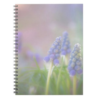 Purple Dream Notebooks