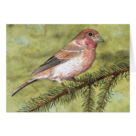 Purple Finch Greetings Card