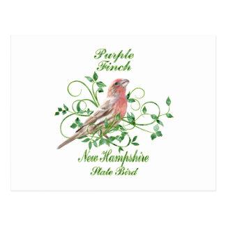 Purple Finch New Hampshire State Bird Postcard