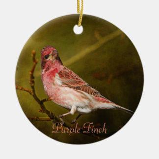 Purple Finch Photography Round Ceramic Ornament