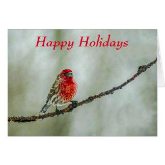 "Purple Finch Red Bird ""Happy Holidays"" Card"