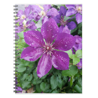 Purple flower after rain notebooks