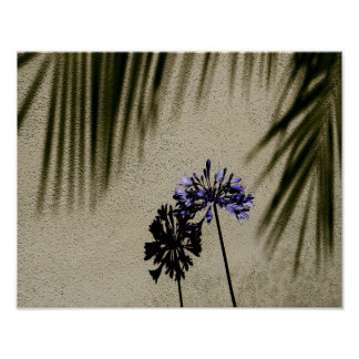 Purple Flower and Shadows Poster