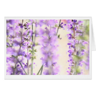 Purple flower blank inside greeting card