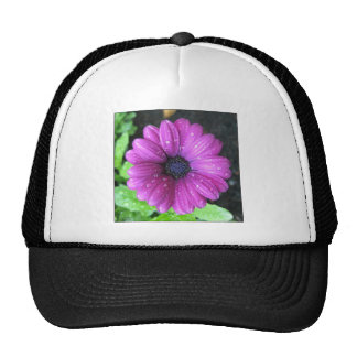 Purple flower trucker hats