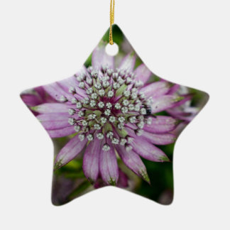 Purple Flower Ceramic Star Decoration