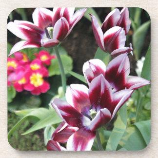 Purple Flower Coasters