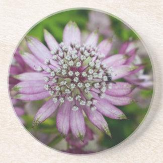 Purple Flower Drink Coasters