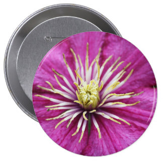 Purple flower in bloom during Spring Pinback Buttons
