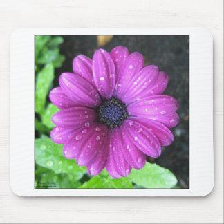 Purple flower mouse pad