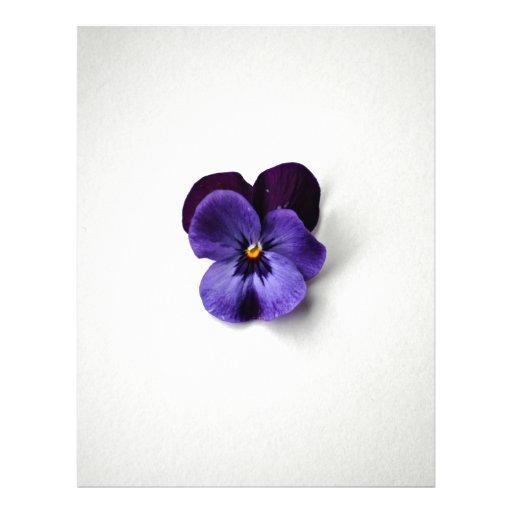 Purple flower on white background flyer