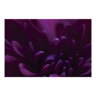 Purple Flower Photograph Poster