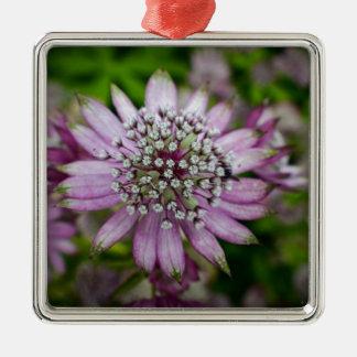 Purple Flower Silver-Colored Square Decoration