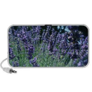 Purple Flower Speakers