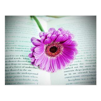Purple Flower Vintage Postcard