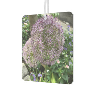 Purple Flowers Allium Flower NYC New York Photo Car Air Freshener