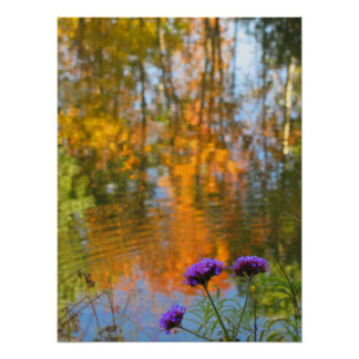 Purple Flowers and Autumn Foliage Reflections Poster