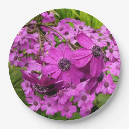 Purple Flowers from San Francisco Paper Plate