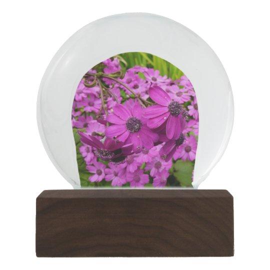 Purple Flowers from San Francisco Snow Globe
